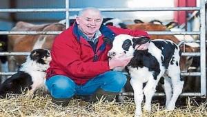 """مزارع """"إيرلندي"""" يطلق حملة للتبرع بالحليب للإغاثة من المجاعة في اليمن (ترجمة خاصة)"""