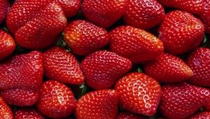 منها الفراولة.. 5 طرق طبيعية لتقوية المناعة