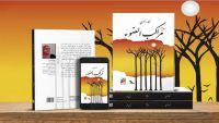 محمد ناجي أحمد يكتب عن عتمة الأنوثة في رواية (مراكب الضوء)