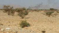الجوف.. الجيش يشن هجوما واسعا على مواقع المليشيا في المتون ويقصف تعزيزات في المصلوب