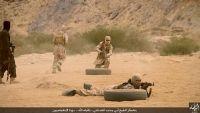 """مصادر: تنظيم """"داعش"""" يؤسس معسكرات تدريبية بالبيضاء أمام مرأى ومسمع كل الجهات"""