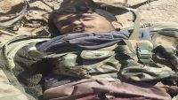 مأرب.. قتلى وجرحى حوثيون والجيش يحرر جبل صلب ومواقع أخرى بصرواح
