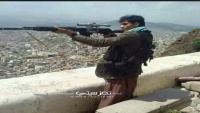 مقتل طفلة برصاص قناص حوثي بتعز