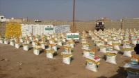 مساعدات غذائية تركية لأكثر من ألف أسرة يمنية