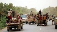 الحوثيون يدفعون بتعزيزات كبيرة من قواتهم باتجاه جنوب الحديدة