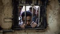 الحكومة تطالب المجتمع الدولي بإنقاذ 30 مختطفا حكم الحوثيون بإعدامهم