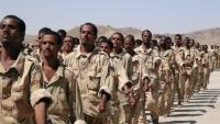 وفاة ثمانية جنود يمنيين داخل معسكر التحالف في الوديعة بسبب لدغات أفاعي