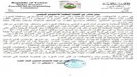 """لجنة اعتصام المهرة تدين اعتداء الطيران السعودي على قرية """"العبري"""""""