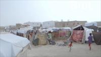 فيلم وثائقي فرنسي: 80% من اليمنيين يعانون نقصا غذائيا شديدا