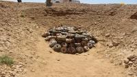 الجيش الوطني يتلف 1740 لغما في جبهة مران بصعدة