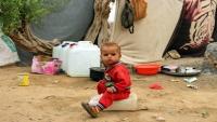 مربُّو كلاب الموظّفين الأمميّين أوْلى من الجِياع.. مغارة العمل الإنساني في اليمن