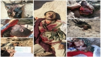 بالصور والفيديو.. قتلى وجرحى وأسرى حوثيون بيد الجيش في جبهة حريب نهم