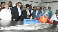 وزير الثروة السمكية يفتتح شركة للأحياء البحرية في حضرموت