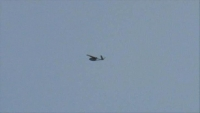 إسقاط طائرتين مسيرتين يعتقد أنهما إماراتيتين كانتا تحلقان فوق منزل محافظ شبوة