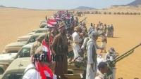 قبيلة آل صياد/ مراد بمأرب تحشد مئات المقاتلين لمواجهة الحوثي