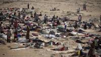 اليمن.. مخاوف من توافد مهاجرين أفارقة نحو منطقة حدودية مع السعودية