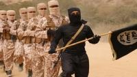 """تقرير أمريكي يكشف استخدام """"داعش"""" كبش فداء لدوافع سياسية وتوسعية في اليمن (ترجمة خاصة)"""