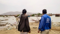 """""""الهجرة الدولية"""" تدعم أكثر من 2700 أسرة نازحة في مأرب"""