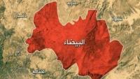 البيضاء.. الجيش الوطني يعلن سيطرته على موقع إستراتيجي في جبهة ناطع