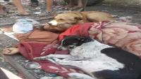 كلاب ضالة تحتضن متشرداً خلال وداعه الأخير في اليمن
