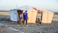 الهجرة الدولية: 150 ألف شخص نزحوا في اليمن منذ مطلع العام الجاري