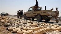 إتلاف أكثر من ألفي لغمزرعها الحوثيون في تعز والحديدة