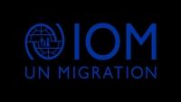 الهجرة الدولية: قدمنا مساعدات طارئة للمتضررين من حادثة حريق مخيم الجفينة بمأرب