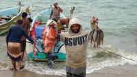 السلطات الإريترية تفرج عن 19 صيادا يمنيا