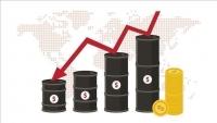 صادرات النفط السعودية تهبط 3.5 بالمئة في مارس