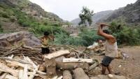 وسط ندرة الوقود.. غابات اليمن ضحية جديدة للحرب