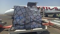 وصول أكثر من سبعة أطنان من لقاحات الأطفال إلى مطار صنعاء